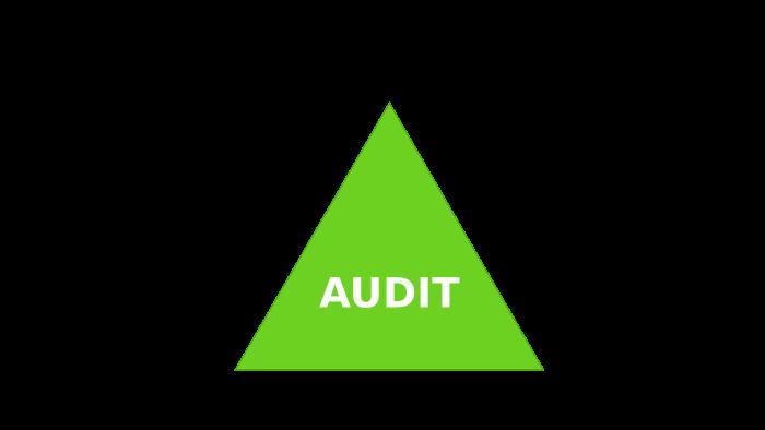 schéma acteur audit